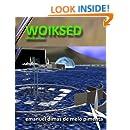 Woiksed: Virtual Planet