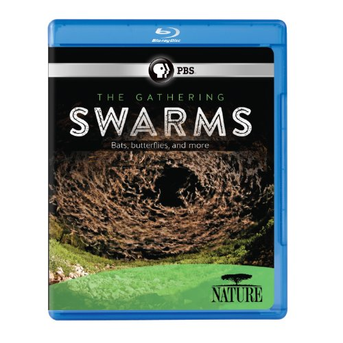 Nature: The Gathering Swarms [Blu-ray]