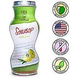 Healthee Soursop Guabanaba Graviola Juice 100% Pure Juice 6 fl oz. (Pack of 12)