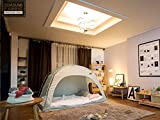 DDASUMI Fabric Indoor Tent for Double bed (Mint) - Blocking Cold air, Privacy, Play Tent