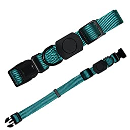 Durable Dog Collar & Leash Set,Wide Nylon Lead Pet Leash With an Adjustable Neck Collar Suitable for Small Medium Dogs Great for Walking And Training (Darkcyan)