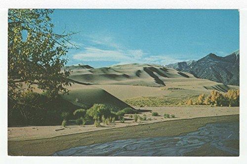 Great Sand Dunes National Monument, Colorado Vintage Original Postcard #3595 - 1960's