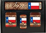 8 Pack TEXAS FLAG GIFT SET: Salsa, BBQ, HS or Steak Sauce in box w/ handle 3pk