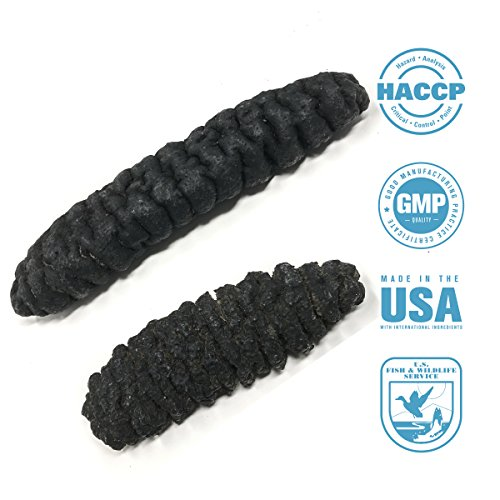 SEABENEFIT Mexicana Black Large - Wild Caught Sun Dried Sea Cucumber All Natural Organic - 8 oz. by SeaBenefit USA