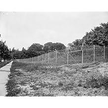 1937 photo Mrs. Harriman does burn fences behind her. Washington, D.C. May 27 c8