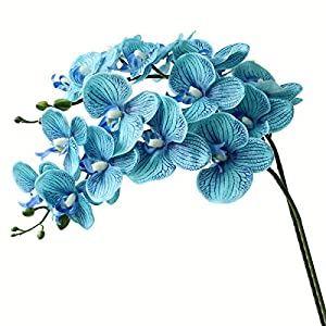 Htmeing 38 Inch Artificial Phalaenopsis Flowers Branches Real Touch (Not Silk) Orchids Flowers for Home Office Wedding Decoration,Pack of 2 4