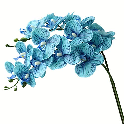 Flower Orchid Phalaenopsis (Htmeing 38 Inch Artificial Phalaenopsis Flowers Branches Real Touch (Not Silk) Orchids Flowers for Home Office Wedding Decoration,Pack of 2 (Blue))