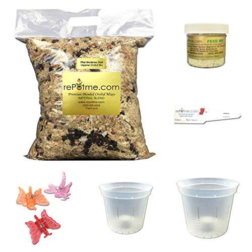 Phalaenopsis Orchid Growing Starter Kit - Includes Instruction Sheet (Phalaenopsis Corsage)