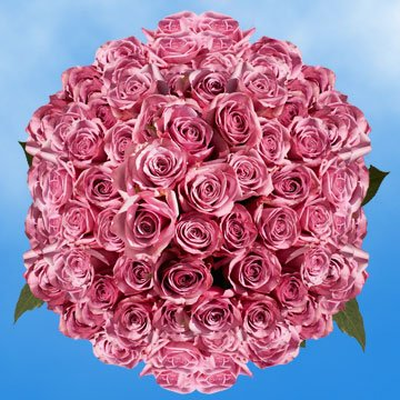 GlobalRose 200 Fresh Cut Lavender Roses - Cool Water Roses - Fresh Flowers Wholesale Express Delivery