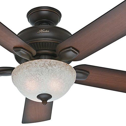 Hunter Fan 52 inch Outdoor Ceiling Fan with Light Kit in Onyx Bengal, 5 Blade (Renewed)