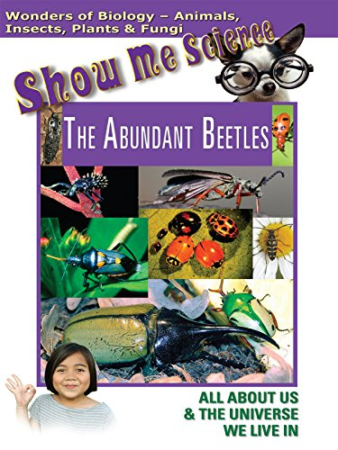 show-me-science-biology-the-abundant-beetles
