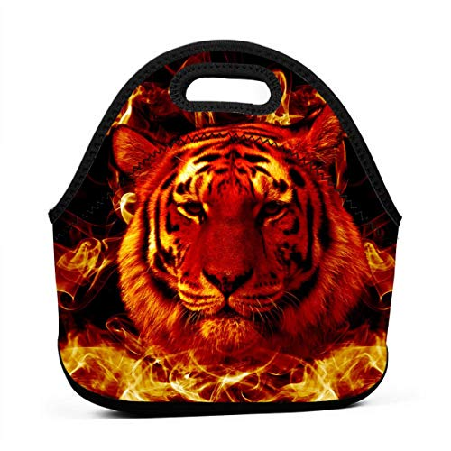 (HeiZQheJ Fire Flaming Tiger Face Lunch Tote Bag Box Insulated for Women Men Adult Work Office Picnic Travel)