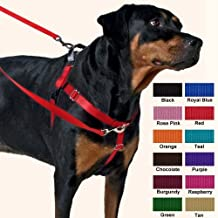 Freedom No-Pull Harness 1 Inch Width XLarge Turquoise by Wiggles Wags Whiskers