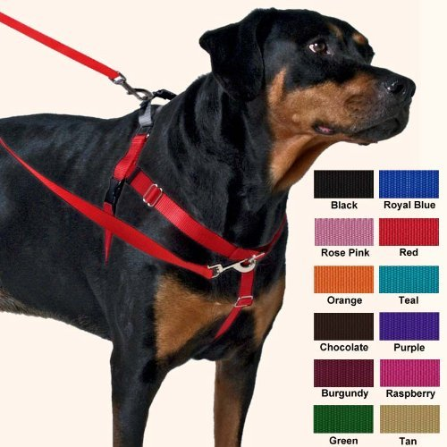 Purple Large Purple Large Freedom No-Pull Harness 1 Inch Width Large Purple by Wiggles Wags Whiskers