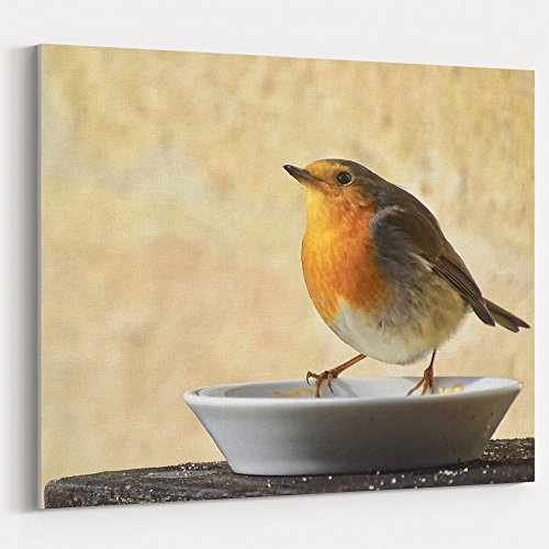 Westlake Art - Bird Robin - 16x20 Canvas Print Wall Art - Canvas Stretched Gallery Wrap Modern Picture Photography Artwork - Ready to Hang 16x20 Inch ()