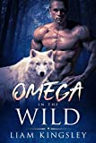 Omega in the Wild: A Gay Paranormal Romance