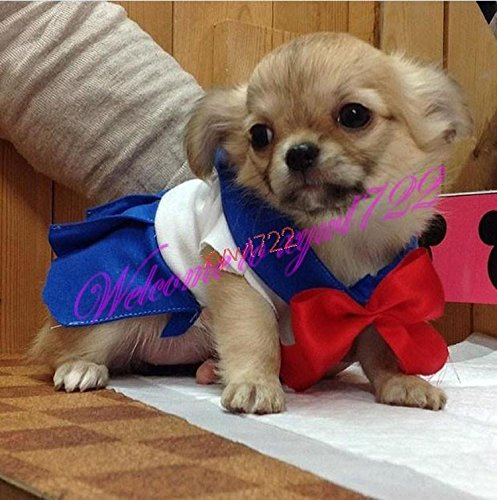 20e Anniversaire L'anime Cosplay Sailor Moon Chien Chat Marin De L'animal Marin Robe Animal Cosplay Costume Pluto Chibi Lune