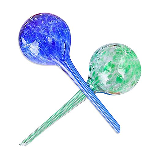 "KINGLAKE 2 Pcs Self Watering Globes Large,Automatic Plant Watering Bulbs for Outdoor Indoor Garden 12"" long x 3.3"" diameter (Random Color) by KINGLAKE"