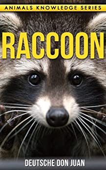 raccoon beautiful pictures interesting facts children book about raccoon 39 s animals knowledge. Black Bedroom Furniture Sets. Home Design Ideas