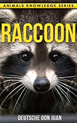Raccoon: Beautiful Pictures & Interesting Facts Children Book About Raccoon's (Animals Knowledge Series)