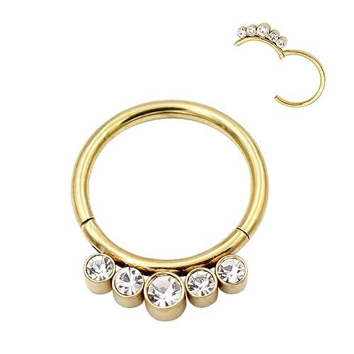 7de3cf4a39333 Amazon.com: FANSING 316L Surgical Steel Nose Rings 16 Gauge Gold ...