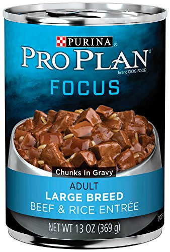 Purina Pro Plan Focus Large Breed Wet Dog Food – 12-13 oz. Cans