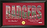 NCAA Wisconsin Badgers Coin Panoramic Photo Mint, 22'' x 15'' x 4'', Bronze