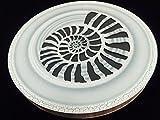 Sound of the stream 300 mm / Strumok (Ammonite) Great sound New Percussion Rainstick