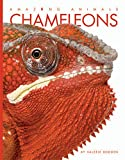 Chameleons (Amazing Animals)