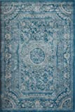 New City Light Blue Traditional French Floral Wool Persian Area Rugs 5'2 x 7'3