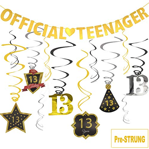 Official Teenager Banner 13 Birthday Decoration Kit, JESWELL Pre Threaded Birthday Party Banner and Sparkling Celebration Swirls for 13 Years Old Party Supplies (Birthday Party For 13 Yr Old Girl)