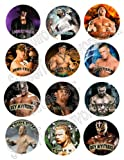 Wrestling WWE Party Favors Pins Buttons Treats Supplies Decoration 12PC