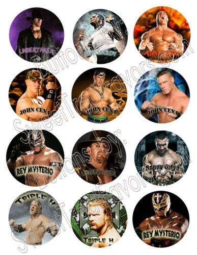 Wrestling WWE Party Favors Pins Buttons Treats Supplies Decoration 12PC by Hallm