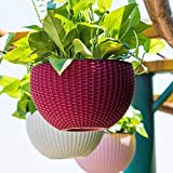 Oshi Greens 3 PCS Hanging Baskets Rattan Waven Flower Pot Plant Pot with Hanging Chain for Houseplants Garden Balcony Decoration in Multicolor