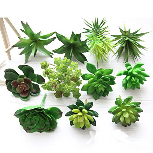 5Pcs-Plastic Lifelike Fake Mini Succulents Artificial Cactus