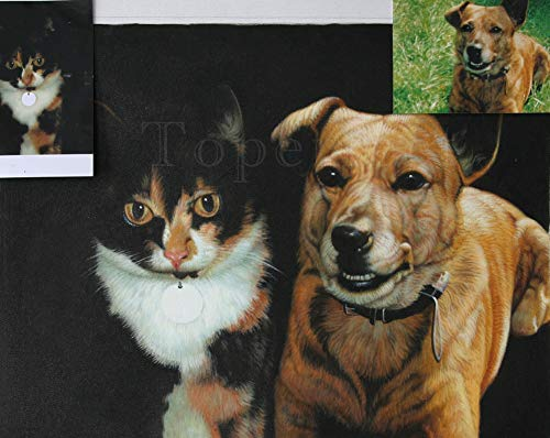 Toperfect $200-$2000 Custom Made - Hand Painted Pet Portrait Paintings of Puppy Kitten Dog Cat Horse Animal - Oil Canvas Art from Pictures as Upload Your Photo -1 Subject-Size11
