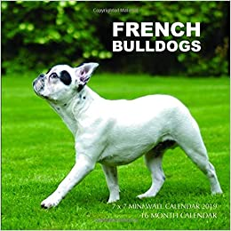 French Bulldogs 7 X 7 Mini Wall Calendar 2019 16 Month Calendar