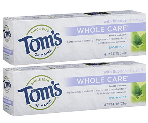 Tom's of Maine Whole Care Fluoride Toothpaste Spearmint, 4.7 Ounce, 2 Count (Comfort Gel Tooth Oral)