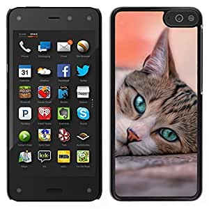 LECELL--Funda protectora / Cubierta / Piel For Amazon Fire Phone -- Cat House American Shorthair británico --