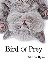 Bird Of Prey: The Beginning by Steven Ryan ebook deal