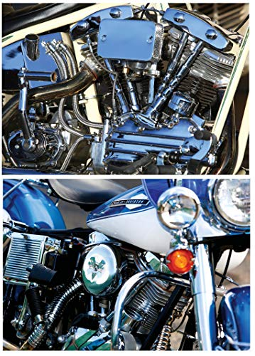 M365 2 Pack Harley Shovelhead & Panhead Poster Set hd Davidson Motorcycle ()