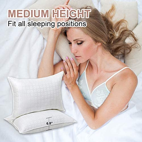 Ventidora Down Alternative Pillow(2-Pack),100% Egyptian Cotton Hypoallergenic Pillow for Sleeping Plush Gel Fiber Pillow Queen-20x28Inches.