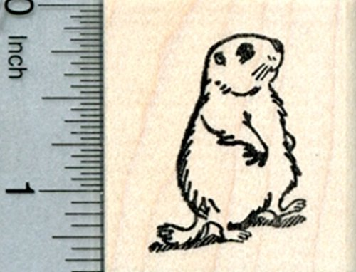 Groundhog Rubber Stamp, Marmot Marching to Spring