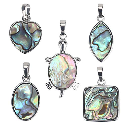 Wholesale 10 PCS Assorted Shaped Natural Abalone Shell Pendant Sea Paua Shell Charms Bulk for Jewelry Making (Small) ()