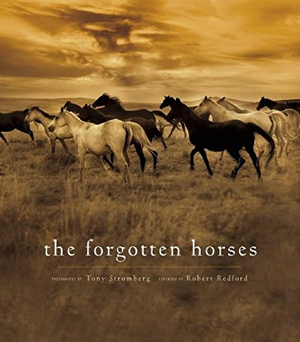 The Forgotten Horses ebook