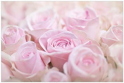 Wall Ario Póster – Rose Ramo de Flores en Rosa en Calidad Premium, tamaño: