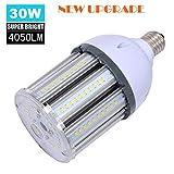30W LED Bulb(200-250W Halogen Bulb Equivalent), LED Corn Light Bulb, Daylight 5000K E26 Medium Base Bulbs 4050 Lumens, for Home Garage Warehouse Workshop Lighting