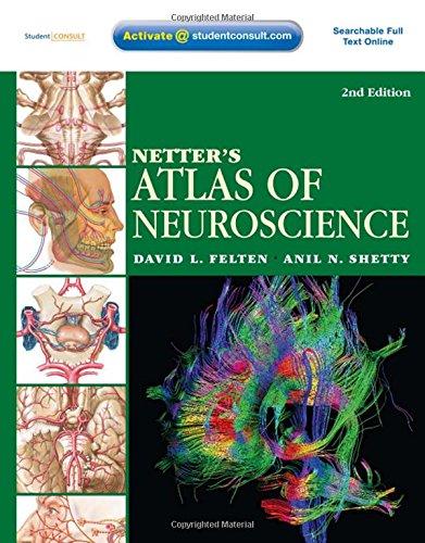 Netter's Atlas of Neuroscience: with STUDENT CONSULT Online Access, 2e (Netter Basic Science)