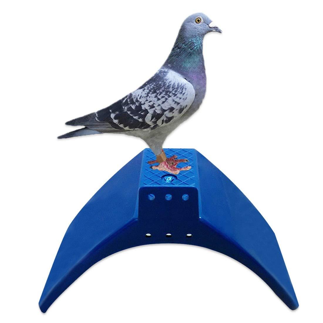 10pcs Plastic Rest Stand Bird House Pigeon Dove Parrots Nest Bird Bed Frame Dwelling Bird Cage Supplies Bird Cages & Nests Home & Garden
