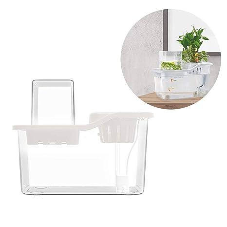 Jannyshop Mini Acuario de Peces Vegetables Symbiotic Small Ecological Acrylic Fish Tank Crece Plantas con Bomba de Agua Blanco: Amazon.es: Bricolaje y ...